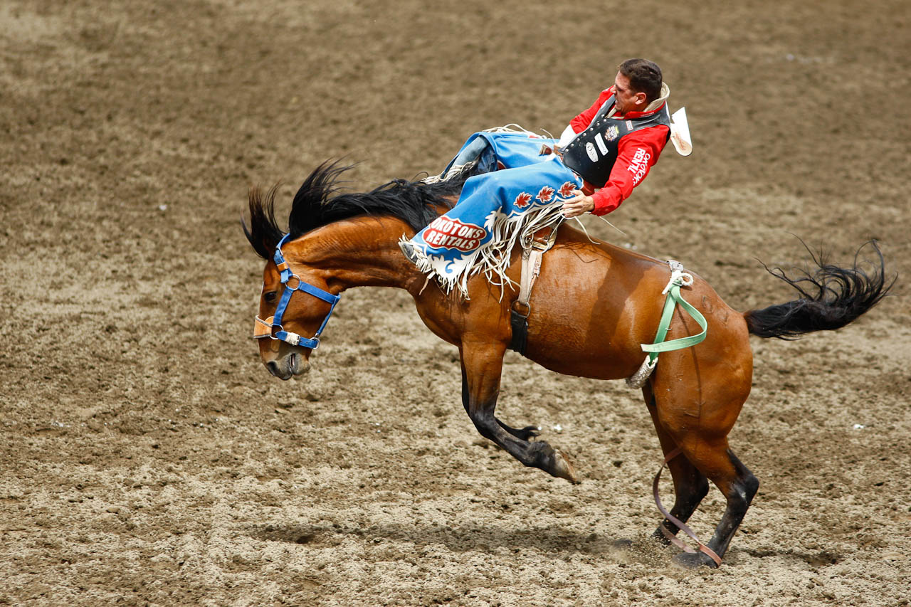 Calgary Stampede Rodeo Tour Dates 2016 2017 Concert